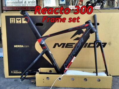 เฟรมเซต Reacto 300
