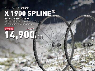 dt swiss x1900 spline
